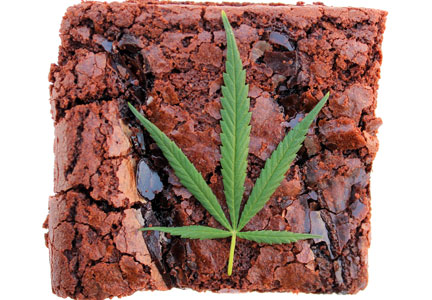 cannibis brownie