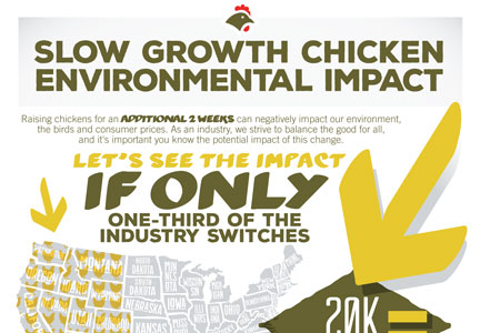NCC Slow Growth Chicken impact infographic