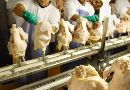 A report by Oxfam American claims poultry workers are frequently denied bathroom breaks.