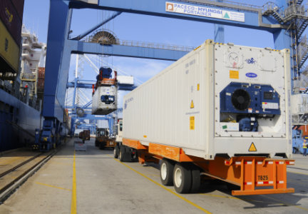 Refrigerated containers at Port of Charleston