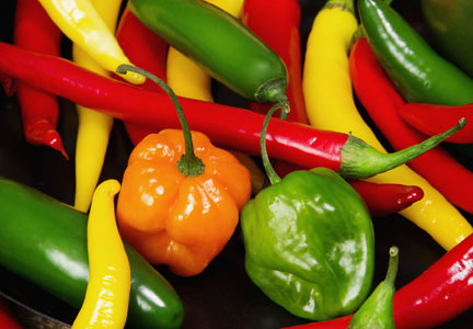 Chili peppers vary in flavor profile and heat levels.