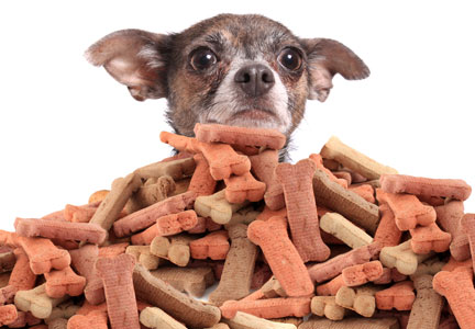 The Pet Food Institute recommends pet treats in moderation.