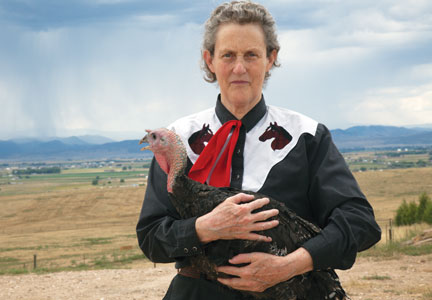 Temple Grandin continues to advocate for improved animal welfare standards.